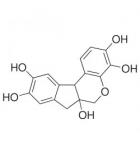 гематоксилин имп фас. 25 гр.